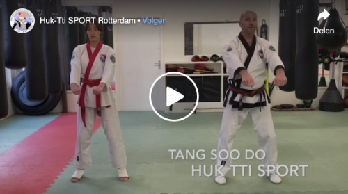 Online training Tang Soo Do